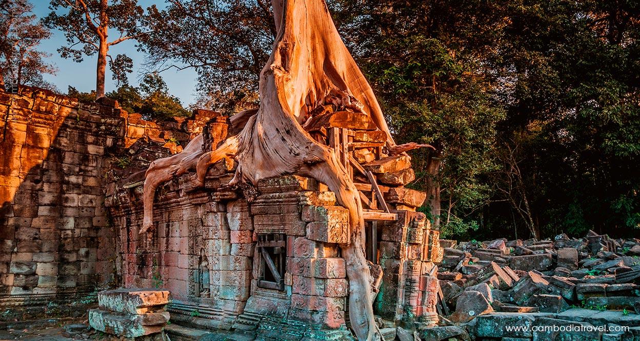 Cambodia-Siem-Reap-Preah-Khan-(Sacred-Sword)-1